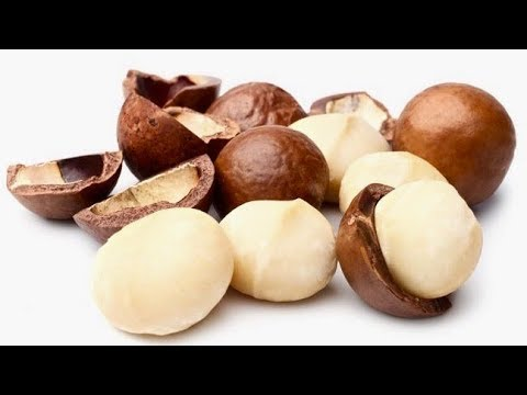 5 Amazing Reasons To Eat Macadamia Nuts