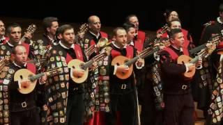 Clavelitos (Tuna de Derecho de Valladolid, 2017)