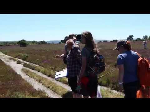 SERTs (Student Environmental Research Teams)