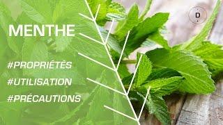 Comment utiliser la menthe - Phytotherapie