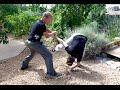 Tai Chi Fighting ..... Wow, Amazing Skills!