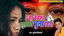 Ja Bewafa Tujhko Bhula Diya - जा बेवफा तुझको भुला दिया - Hindi Sad Songs - सबसे दर्द भरा गीत