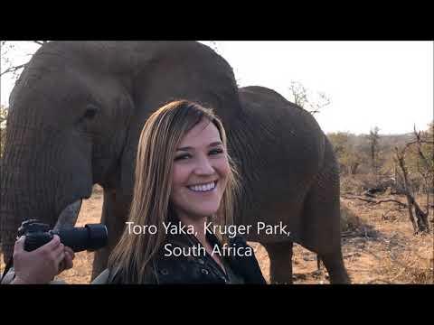 Africa Summer Trip 2017 Safari South Africa, Zimbabwe, Botswana, Zambia, Mozambique, Namibia