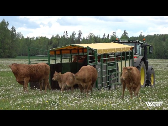 Livestock trailer for animals (cows, sheeps, pigs..). Western WF7DTV.