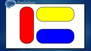 Test personnalité: ce graphe vous montre si vous remarquez  les similitudes ou les différences
