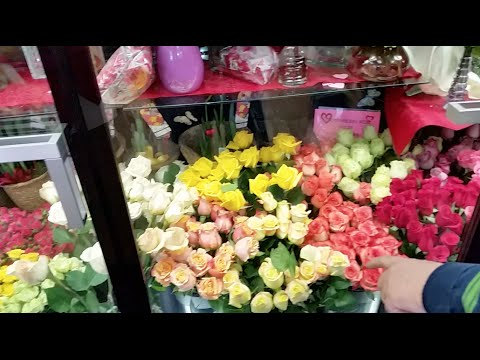 How Many Different Colors of Roses are Available for Valentine's Day?