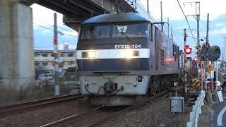 Video 【4K】JR山陽本線 EF210-104号機牽引 2081レ貨物列車 download MP3, 3GP, MP4, WEBM, AVI, FLV Desember 2017