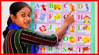 ABCD VIDEO   ALPHABET   ENGLISH LETTERS   abcdefghijklmnopqrstuvwxyz   Nursery School   English Word