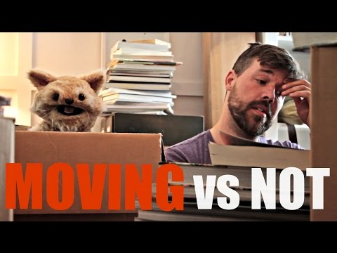 This Cat is NED - EP20 - MOVING vs. NOT
