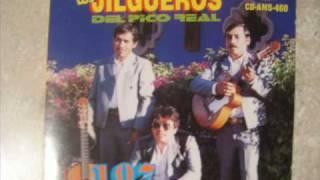 LOS JILGUEROS DEL PICO REAL-MASACRE EN GUERRERO