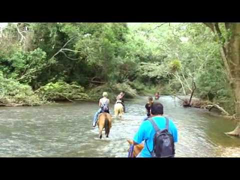 Belmopan City Tour on Horseback Riding