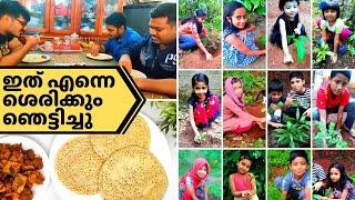 Breakfast Vlog | Rava Appam, Beef Pirattu | Plant a tree challenge | Salu Kitchen