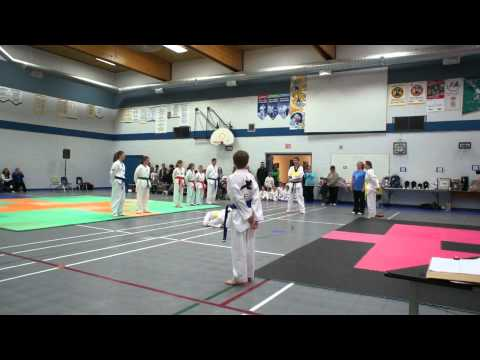 Medstead Tae Kwon Do Demonstration 2012