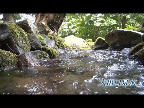 新潟県の名水 大出口泉水新潟県上越市