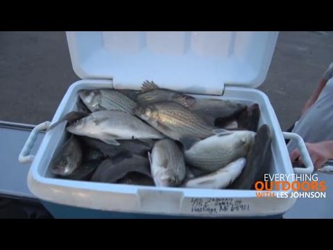 Walleye & White Bass Fishing  -  Waconda Lake North Central Kansas