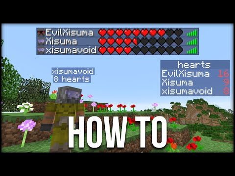 minecraft:-how-to-display-hearts-&-other-statistics-tutorial