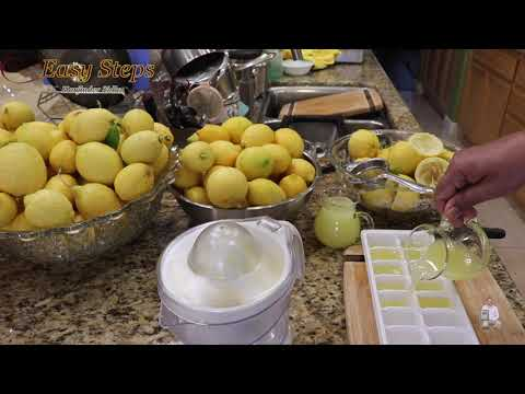 How To Store Lemon Juice for a Long Time in Fridge | How To Preserve Lemon Juice