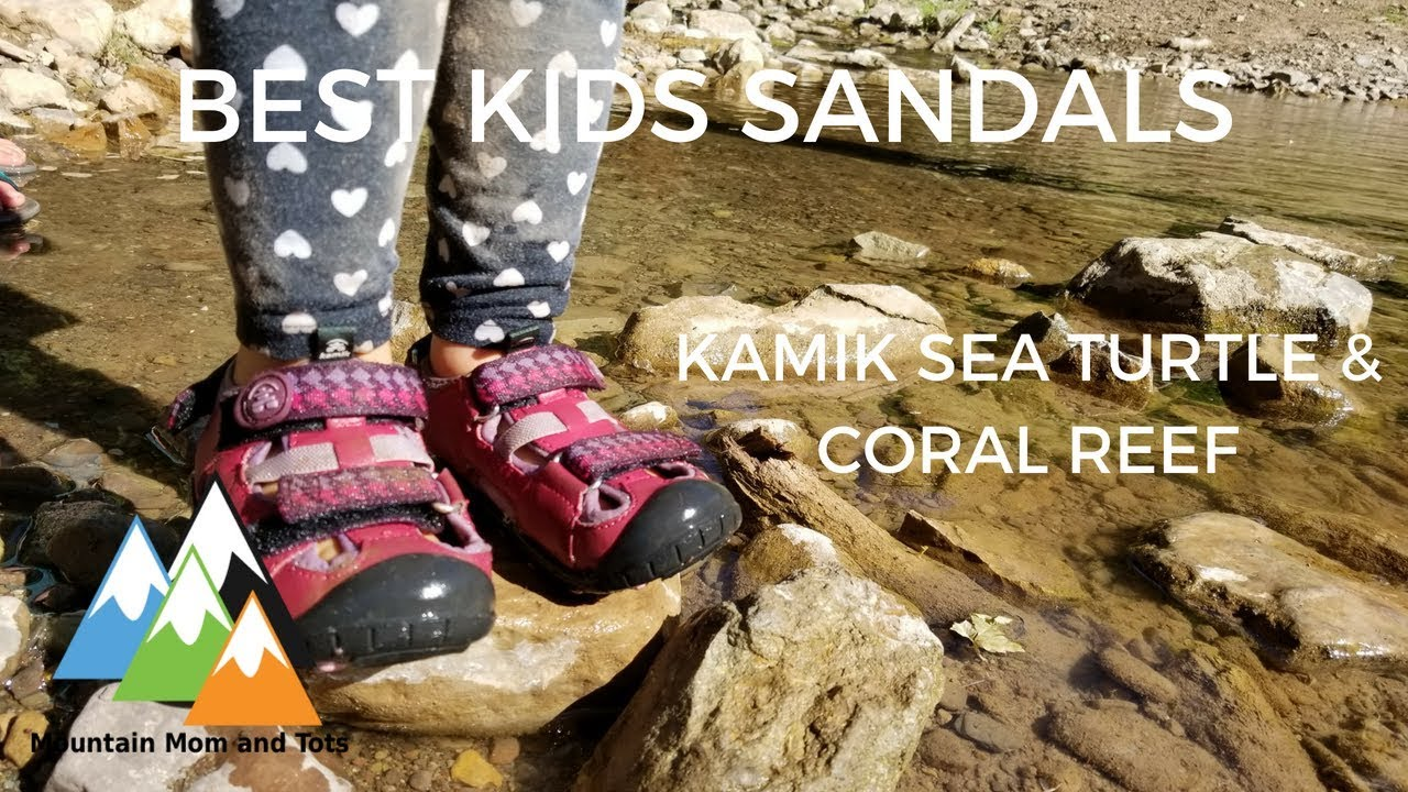 Kamik Sea Turtle and Coral Reef Review