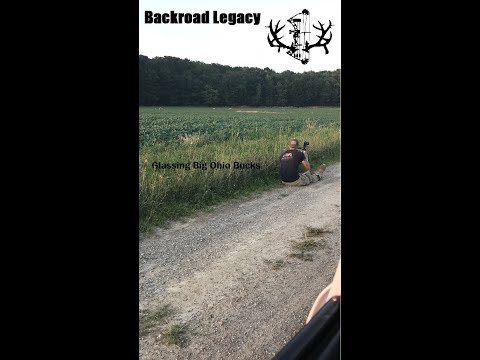 Scouting Big Ohio Bucks