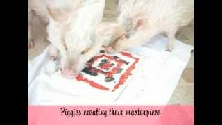 Piggy Paintings Trailer