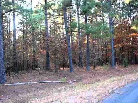 Real estate for sale in Hot Springs Village Arkansas - 10...