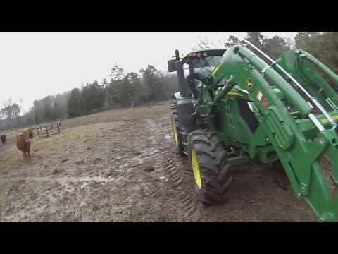 Feeding Hay and Feed