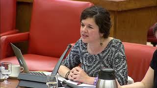 Sofía Castañón en la Comisión de Presupuestos el 17 de mayo