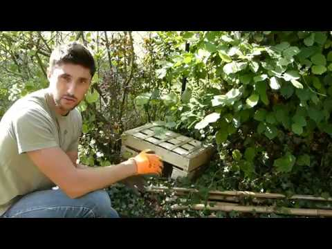 Accueillir la biodiversit dans son jardin diy2 un abri h risson youtube - Nourrir un herisson dans son jardin ...