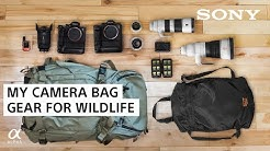 What's in My Camera Bag 2020: Wildlife Photography Gear | Colby Brown | Sony Alpha