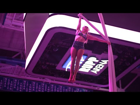 P!nk at Rupp Arena - May 9, 2019 Mp3