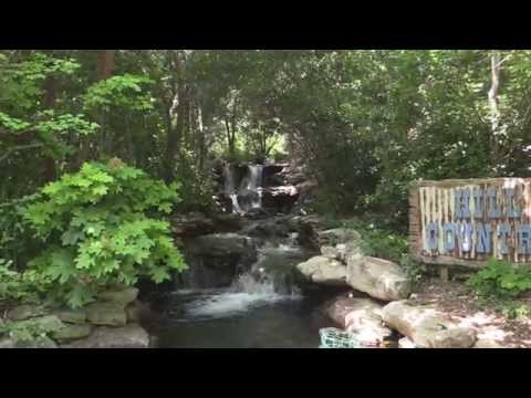 Fort Worth Zoo video 06 30 2015