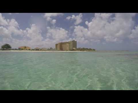 Snorkelling at the Riu Palace Antillas - Aruba