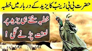 Hazrat Bibi Zainab (R.A) Darbaar E Yazid Main Khutba | Islam Advisor