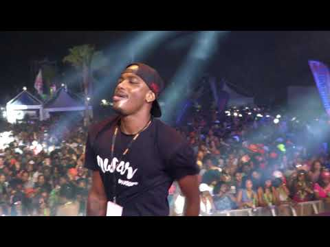DJ GREG LIVE PERFORMANCE AT ALL DAY IN MUSIC FESTIVAL 2017