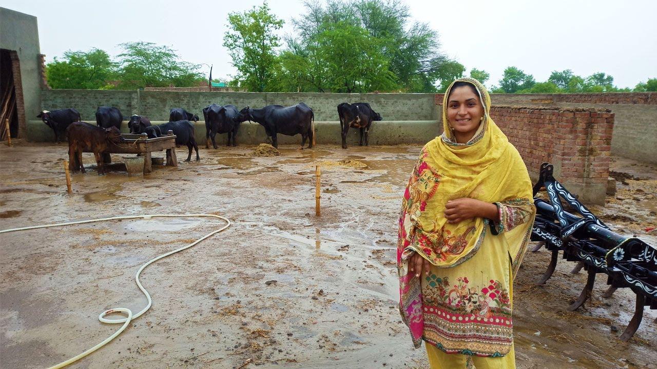 Rain after Long Time in Punjab I Village Life I Garmi main Sardi our Barish