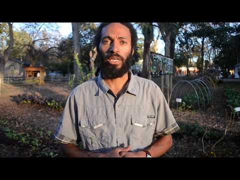 Growing the Hood: iGrow Youth Farm