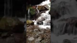 養老の滝 2017.6.255 thumbnail