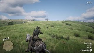 Red Dead Redemption 2 funny shot to the face