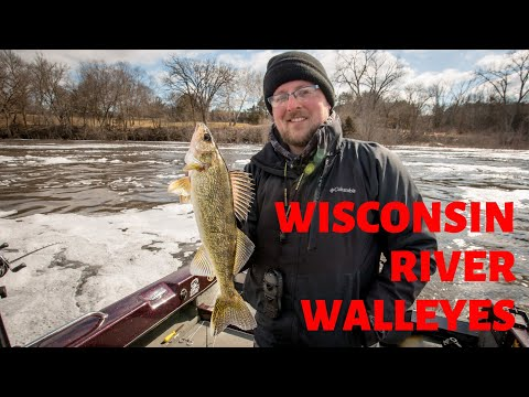 Wisconsin River Walleyes *Tips And Action Packed!*