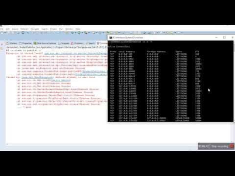 java.net.BindException: Address already  in use, JVM already in use,