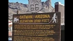 Oatman,Az~5 Things To Know Before You Go...