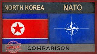 NORTH KOREA vs NATO ✪ Army Comparison [2019]