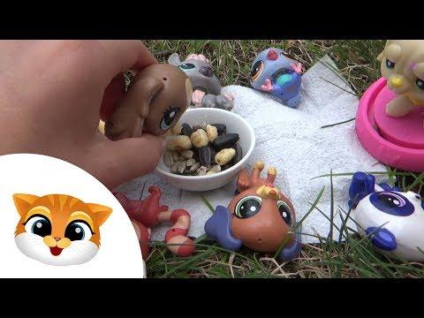Pet Shop Week 11  LPS na pikniku  littlest pet shop at the picnic  video lps