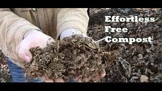 One Man's Yard Waste is Another Man's Compost