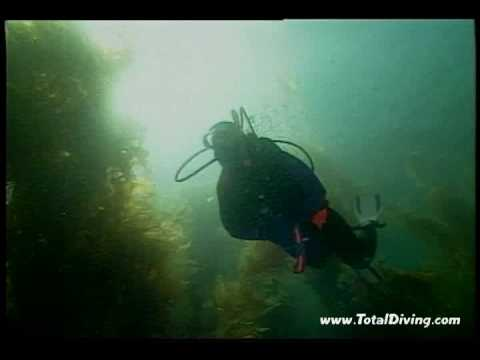 This is Scuba Diving... (Montreal, QC, Canada)