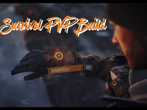 Survival PVP Build (The Division)