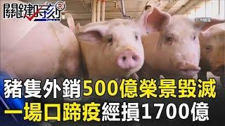 21年前豬隻外銷500億榮景毀滅.. 一場口蹄疫「萬豬塚」經損1700億!關鍵時刻   20181213-3 朱學恒