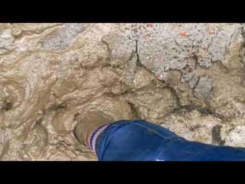 My very muddy shoes.It's VANS OLD SKOOL...