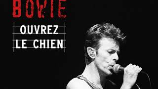 David Bowie - Teenage Wildlife (Live at the Starplex Amphitheater, Dallas, 13th October, 1995)