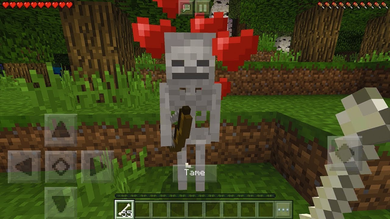 Download How To Make a Friendly Skeleton in Minecraft Pocket Edition (Friendly Skeleton Addon)